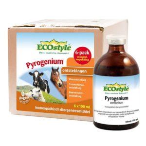 Ecostyle Pyrogenium 6-pack